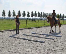 Kun je blokkades uit je paard rijden?