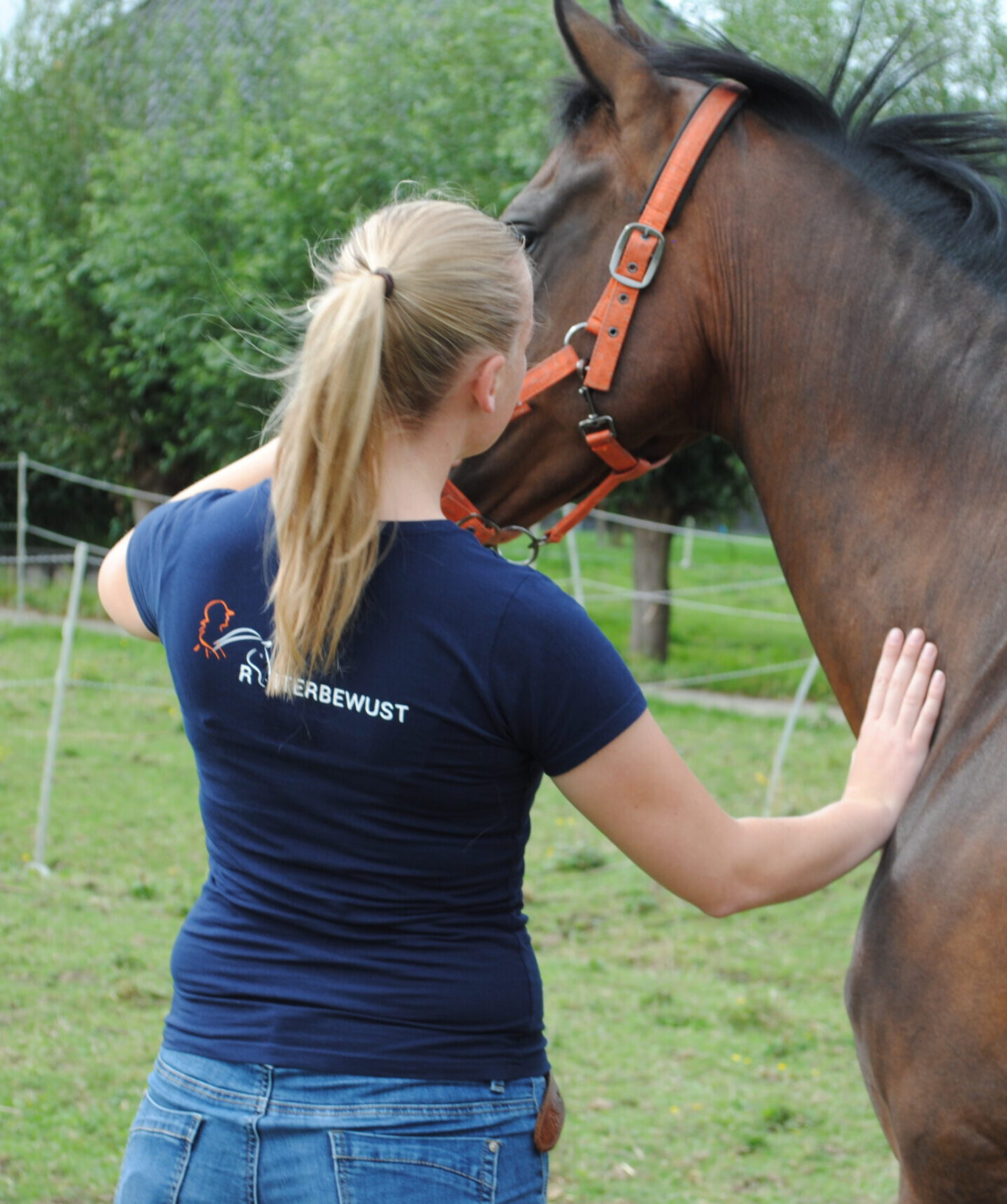 5 tips om je zelf je paard te kunnen ondersteunen